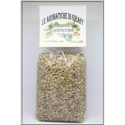 Lenticchie Verdi 500g (Buste)